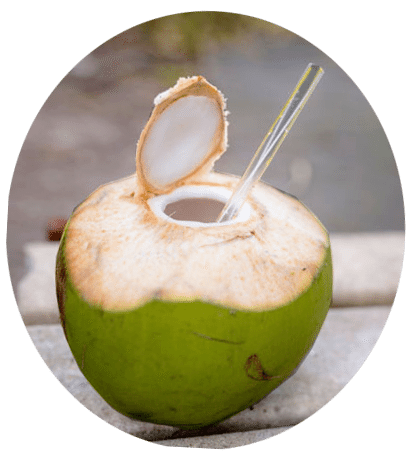 Coconut water png. Grace this summer s