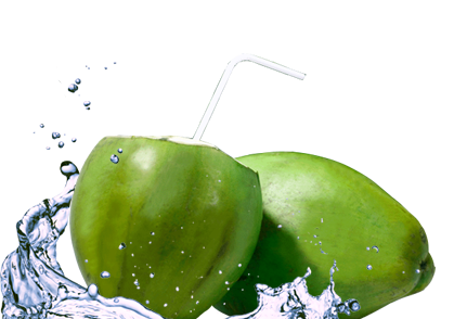 Coconut water png. Shridesk the truth about