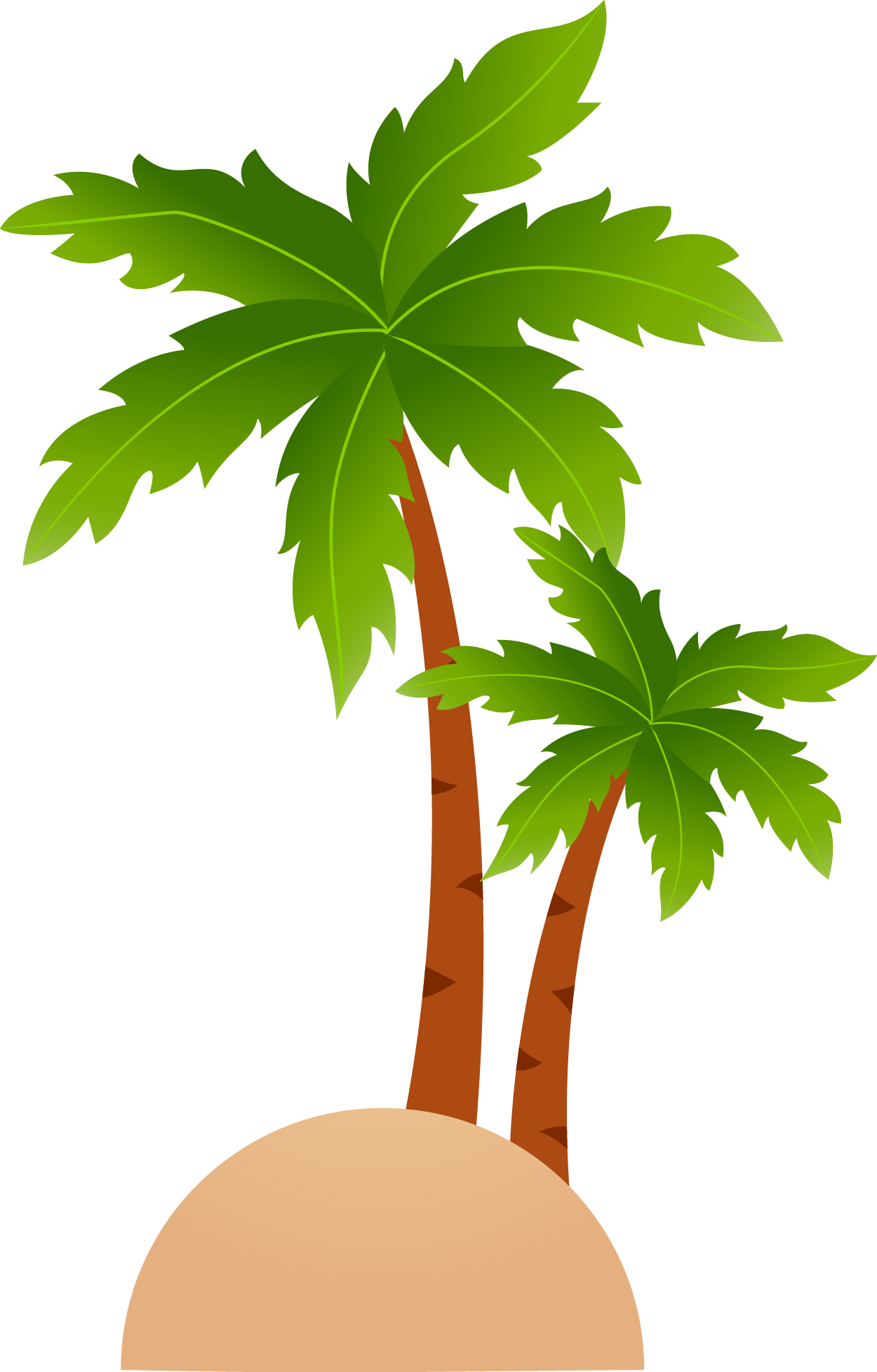 Coconuts vector cartoon. Tropical islands resort clip