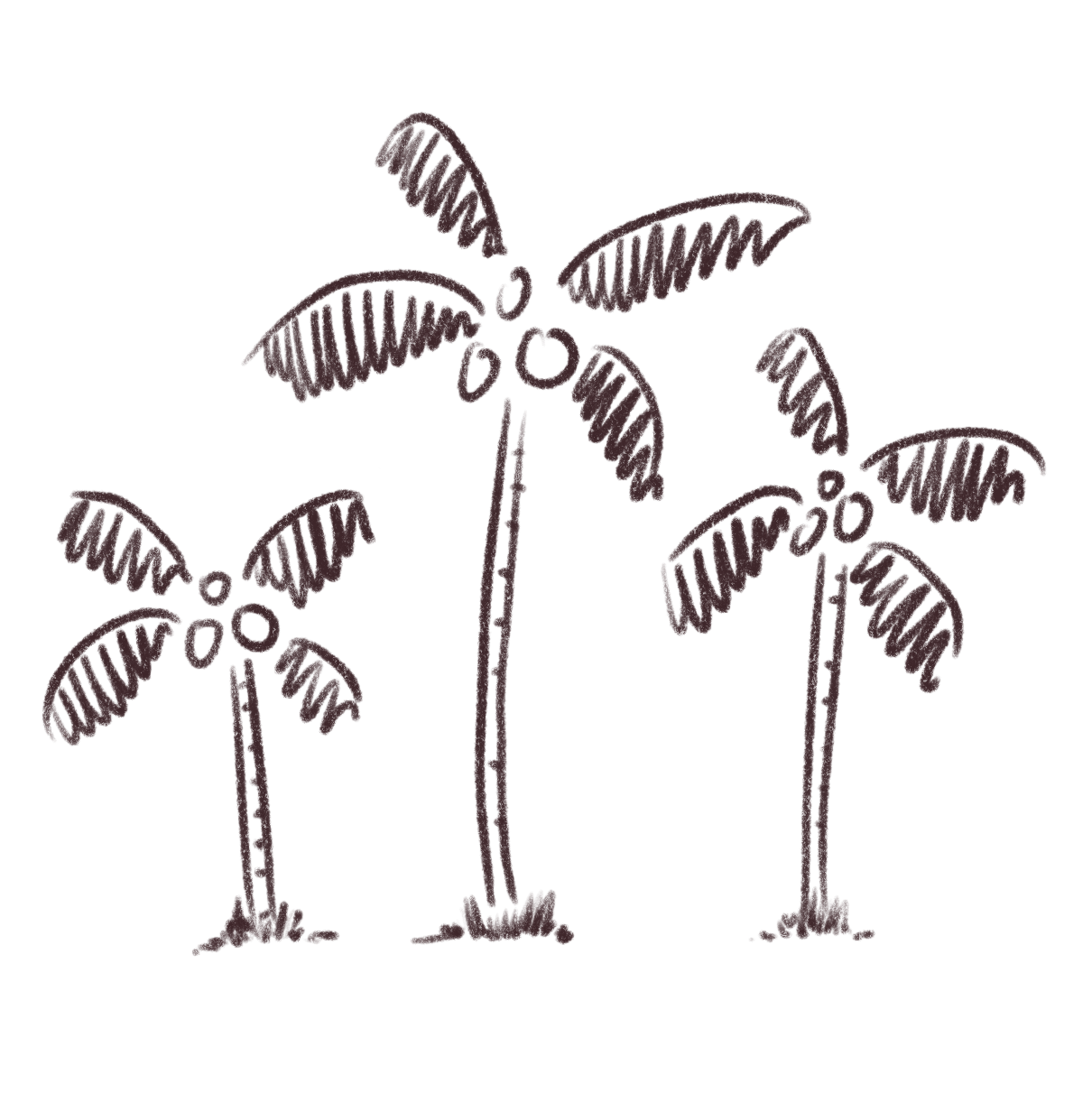 Bowls made from natural. Coconuts vector coconut husk png freeuse