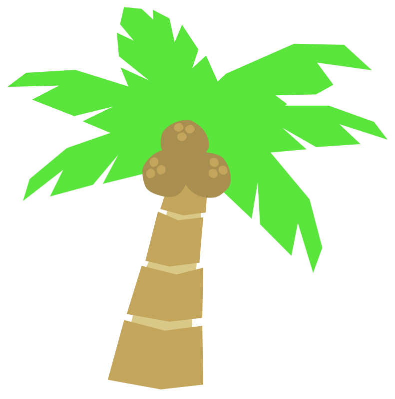 Coconuts vector flat. Collection of free cocoanut