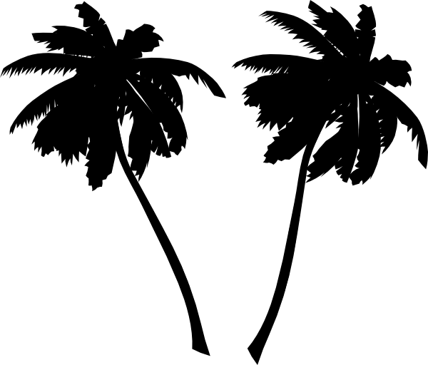 Coconuts vector outline. Palm tree silhouette free