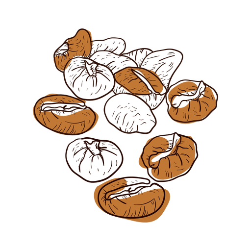 Hand drawn coffee png. Beans vector transparent png royalty free