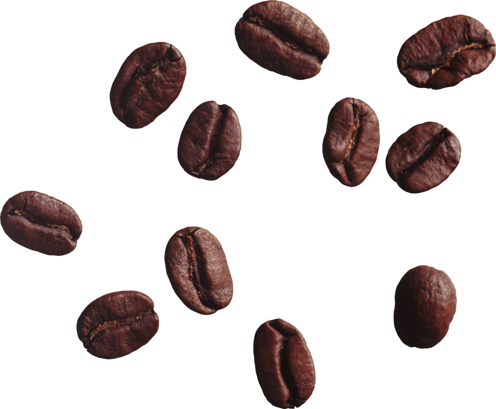 Coffee grain png. Beans images free download