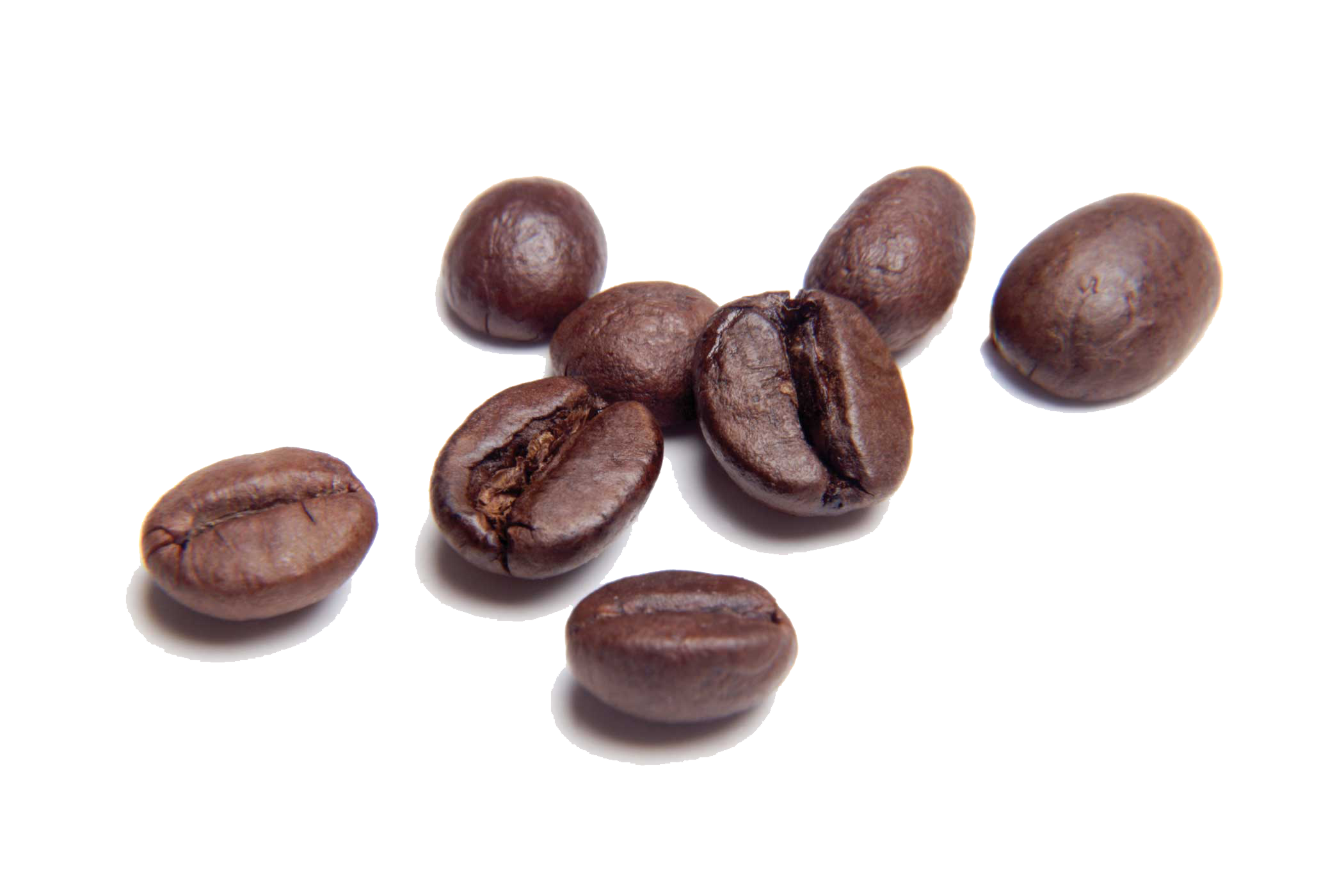 Coffee grain png. Beans transparent images all