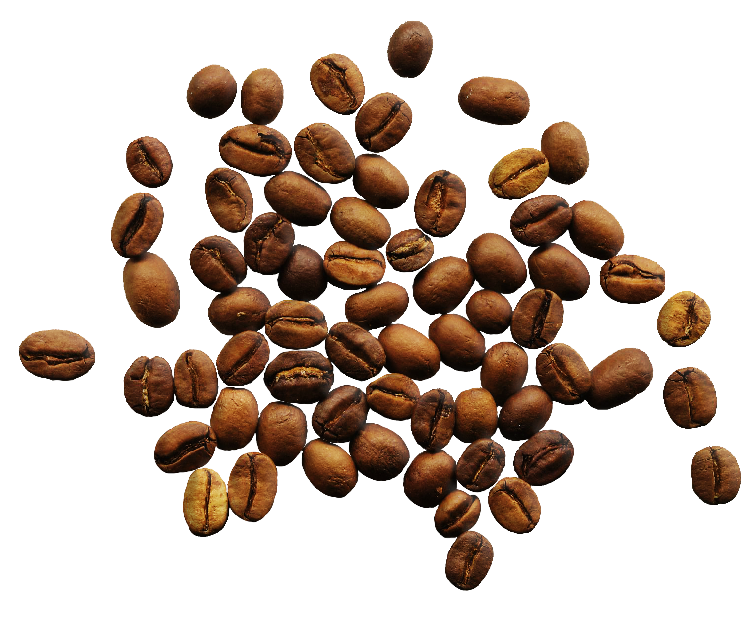 Coffee grounds png. Beans images free download