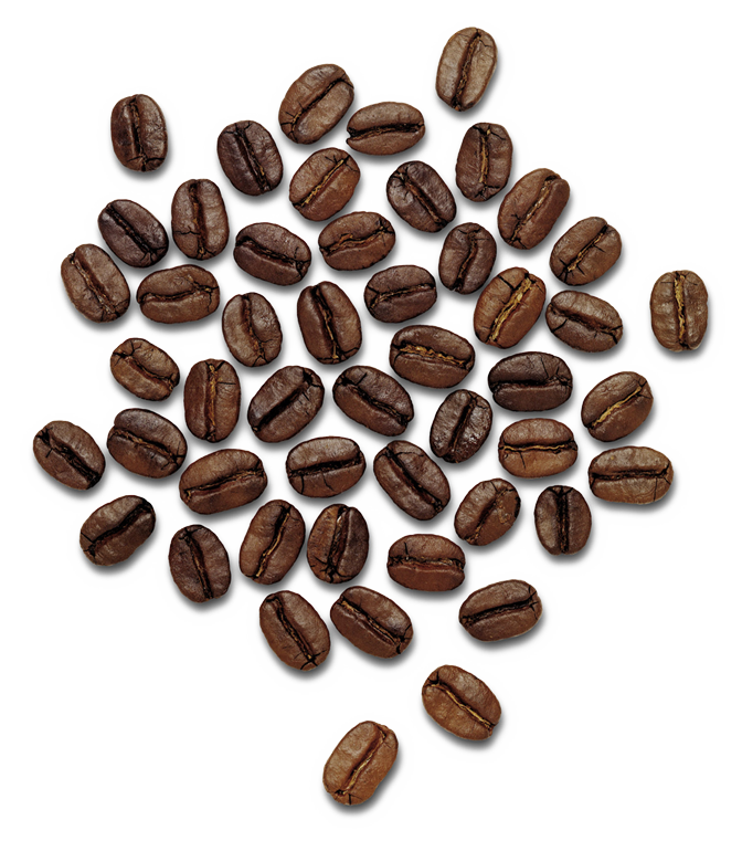 Coffee .png. Beans png images free