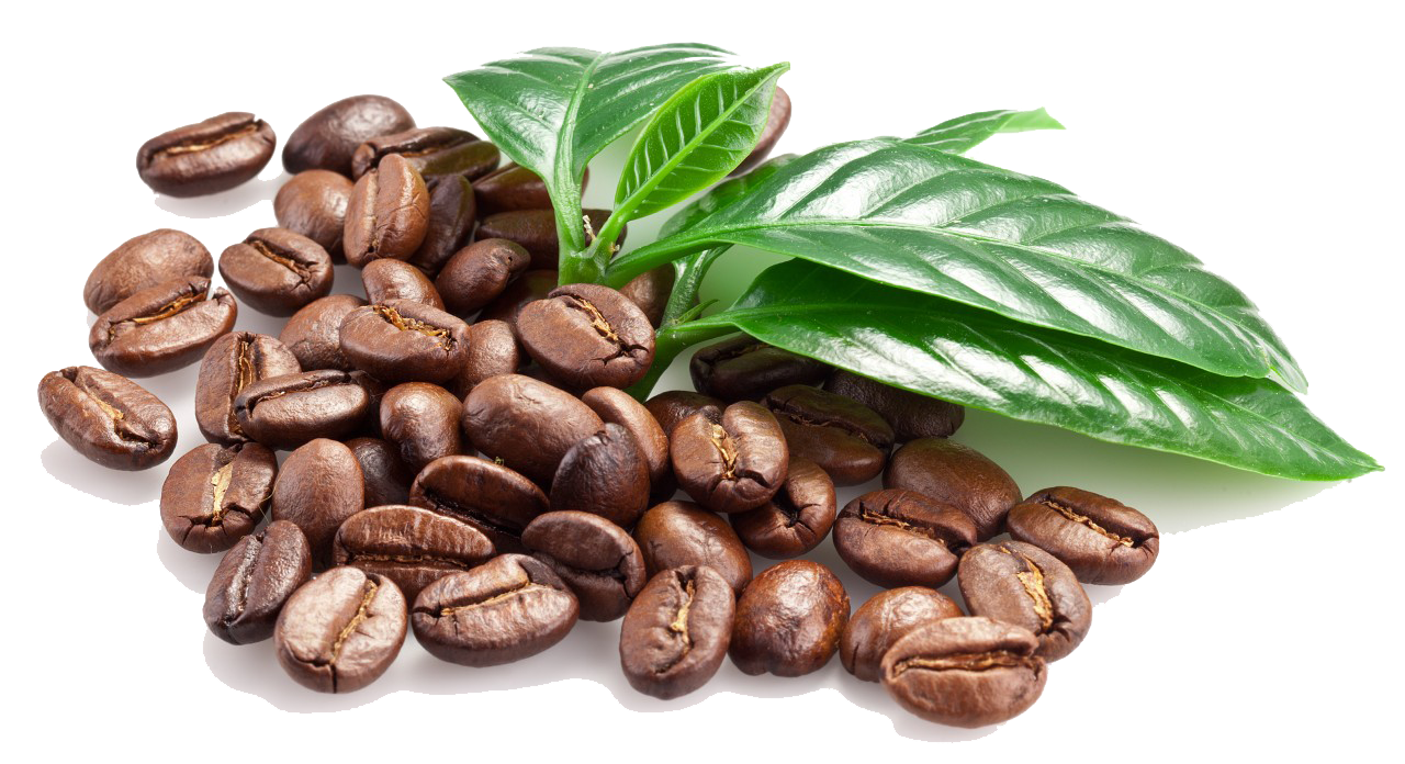 Coffee .png. Beans png transparent images