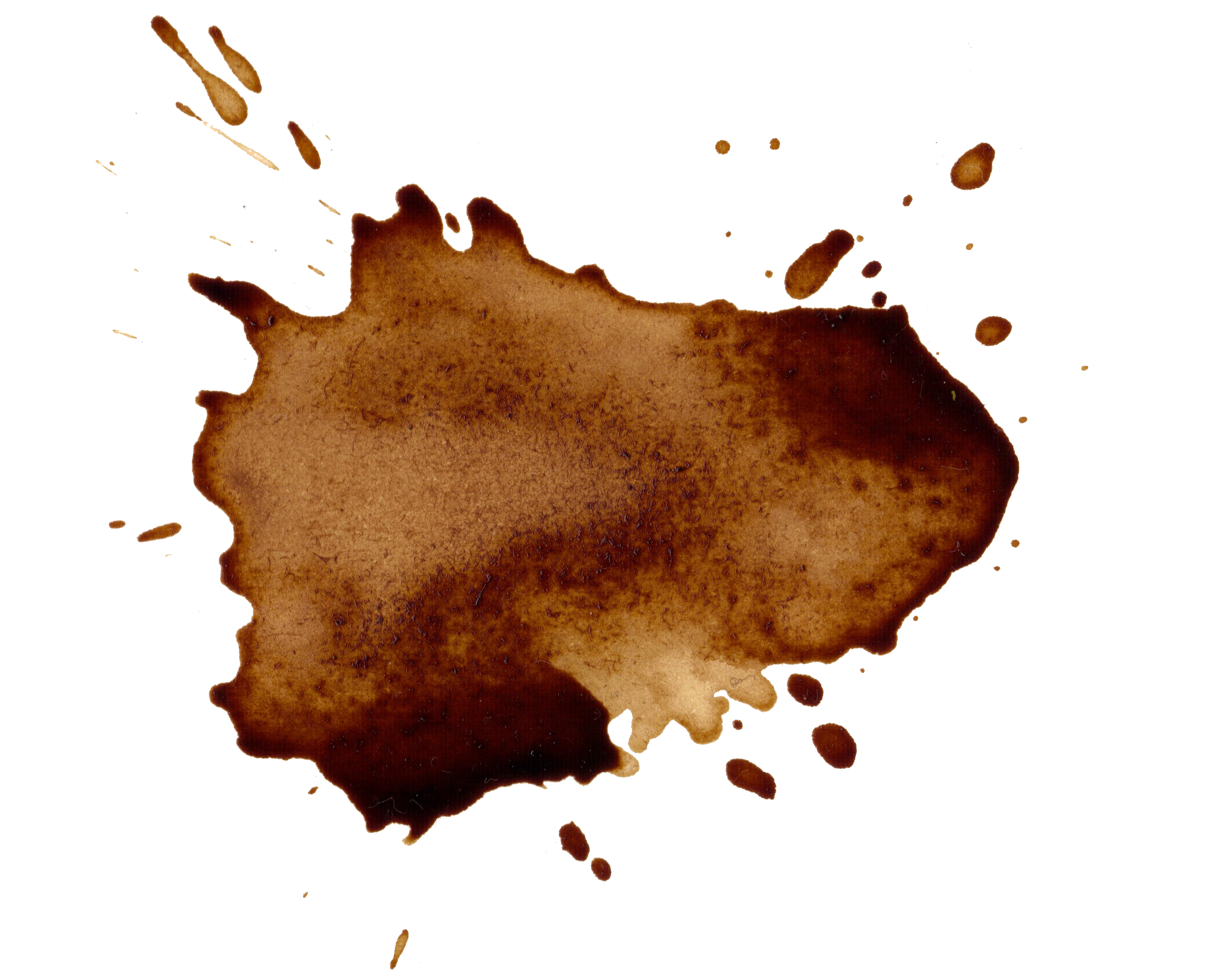 Coffee stains png. Splatter transparent onlygfx
