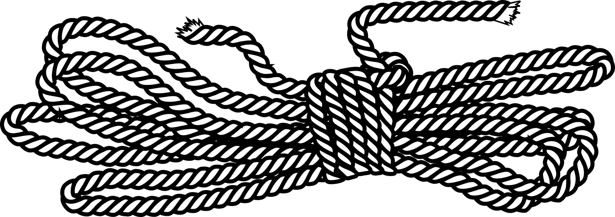 Coil drawing black and white