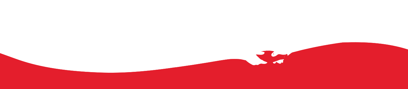 Coca cola wave png. Order products consolidated faqs
