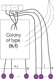 Colony drawing. Schematic representing a of