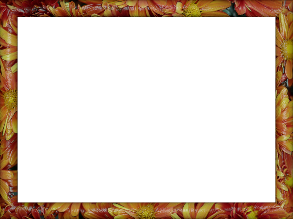 Color border png. Red yellow floral ceramic