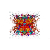 Color explosion png. Mug spreadshirt