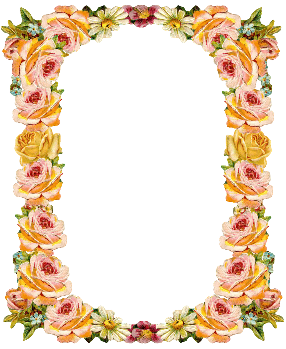 Free digital peach colored. Vintage flower frame png vector library
