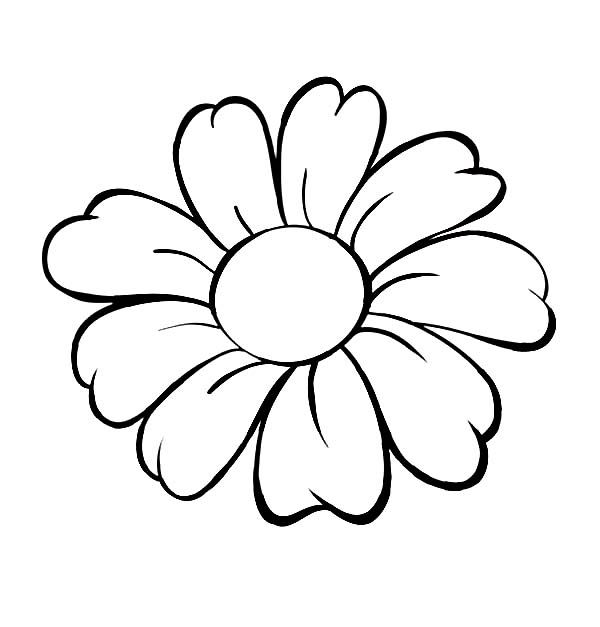 Colored clipart daisy. Flower outline coloring page
