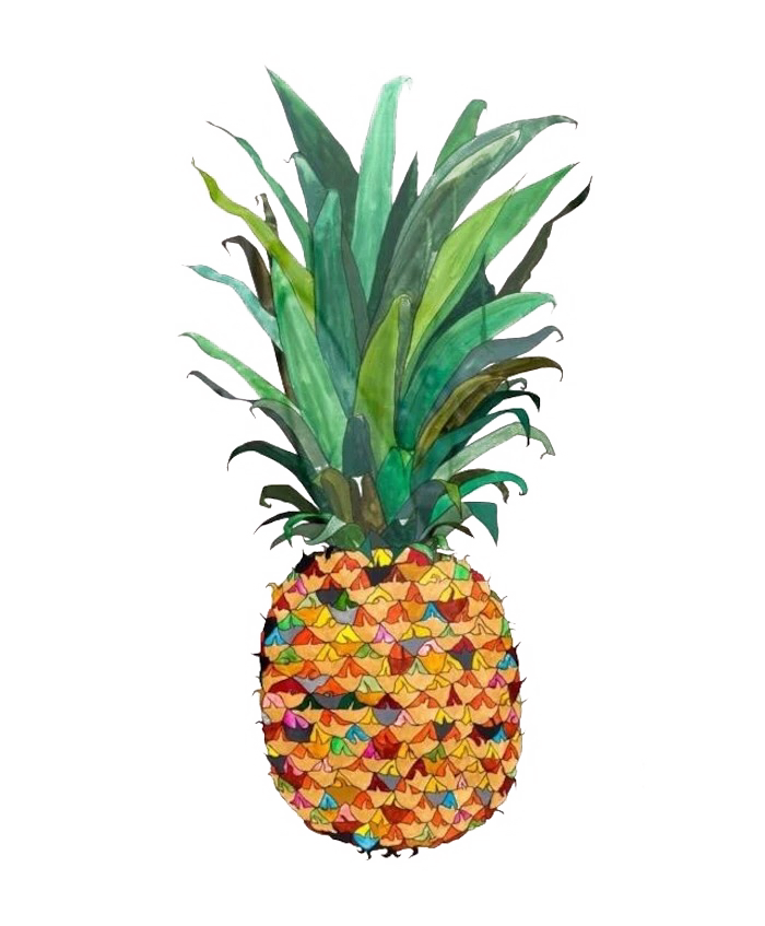 Colored drawing pineapple. Watercolor painting illustration hand