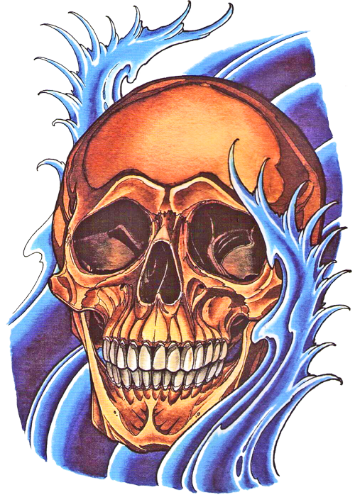 Colored drawing skull. Find gifts for him