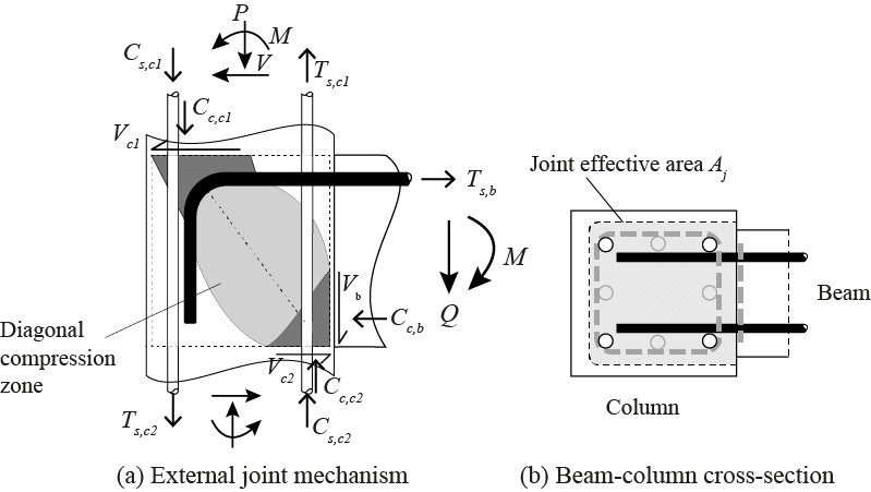 Concrete drawing technical. Reinforced beam column connection