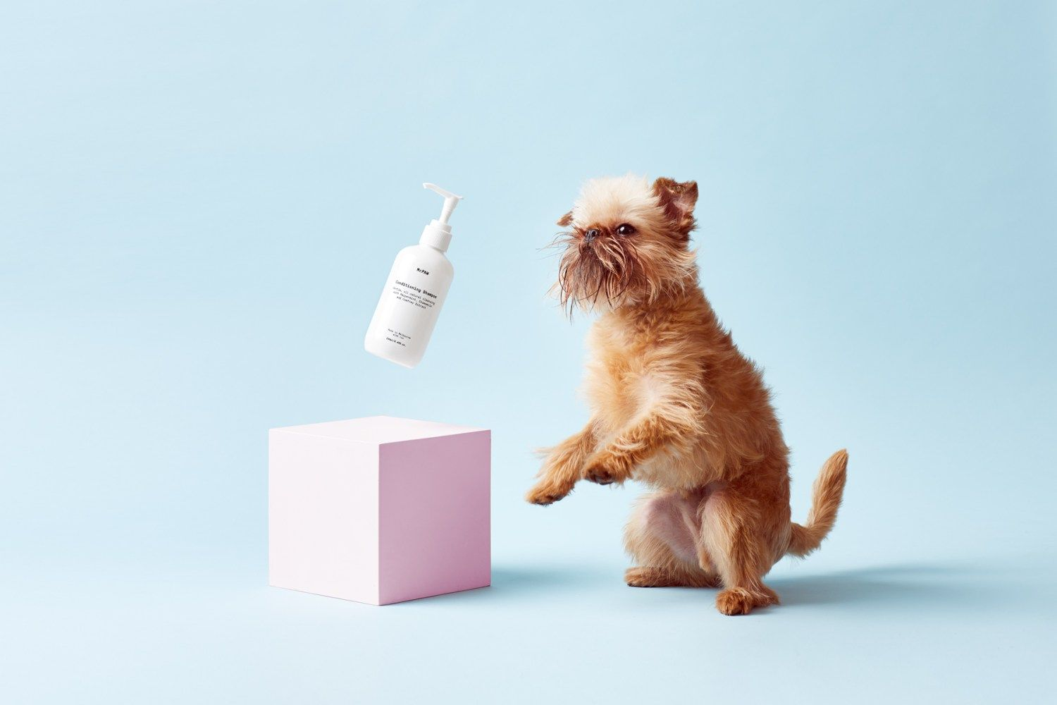 Conditioner clipart dog shampoo. Mr paw is a