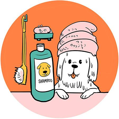 Conditioner clipart dog shampoo. And you wonderwoof