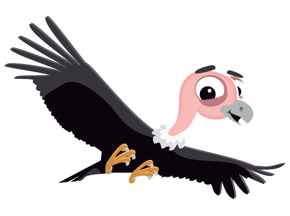 Condor drawing california. Collection of cute