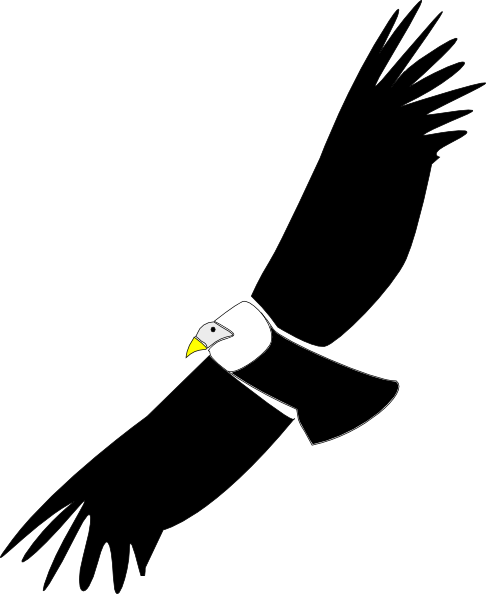 Clipart cartoon pencil and. Condor drawing easy jpg free download