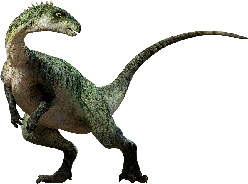 Confused dinosaur png. Transparent images all image