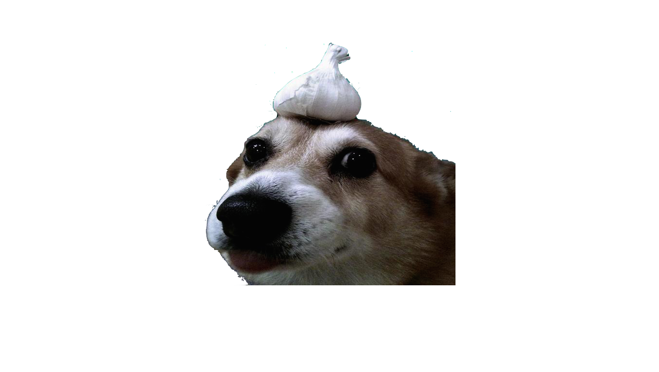Confused dog png. I made this templet