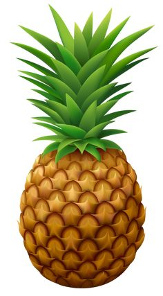 Conical pineapple. Best romance images
