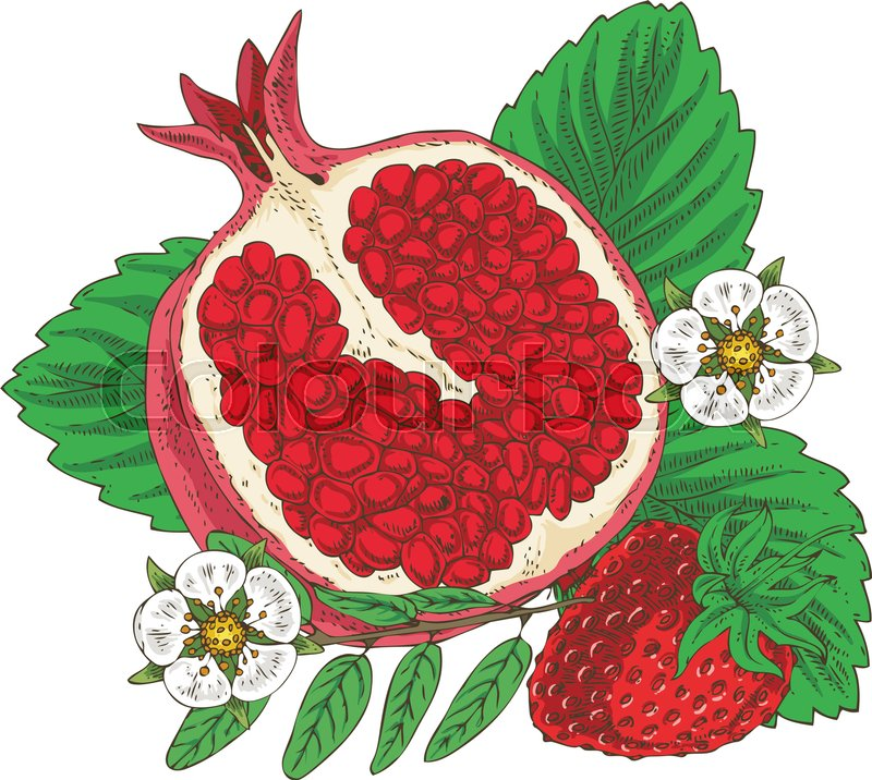 Conical pomegranate