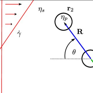 Connection vector. The contribution of two