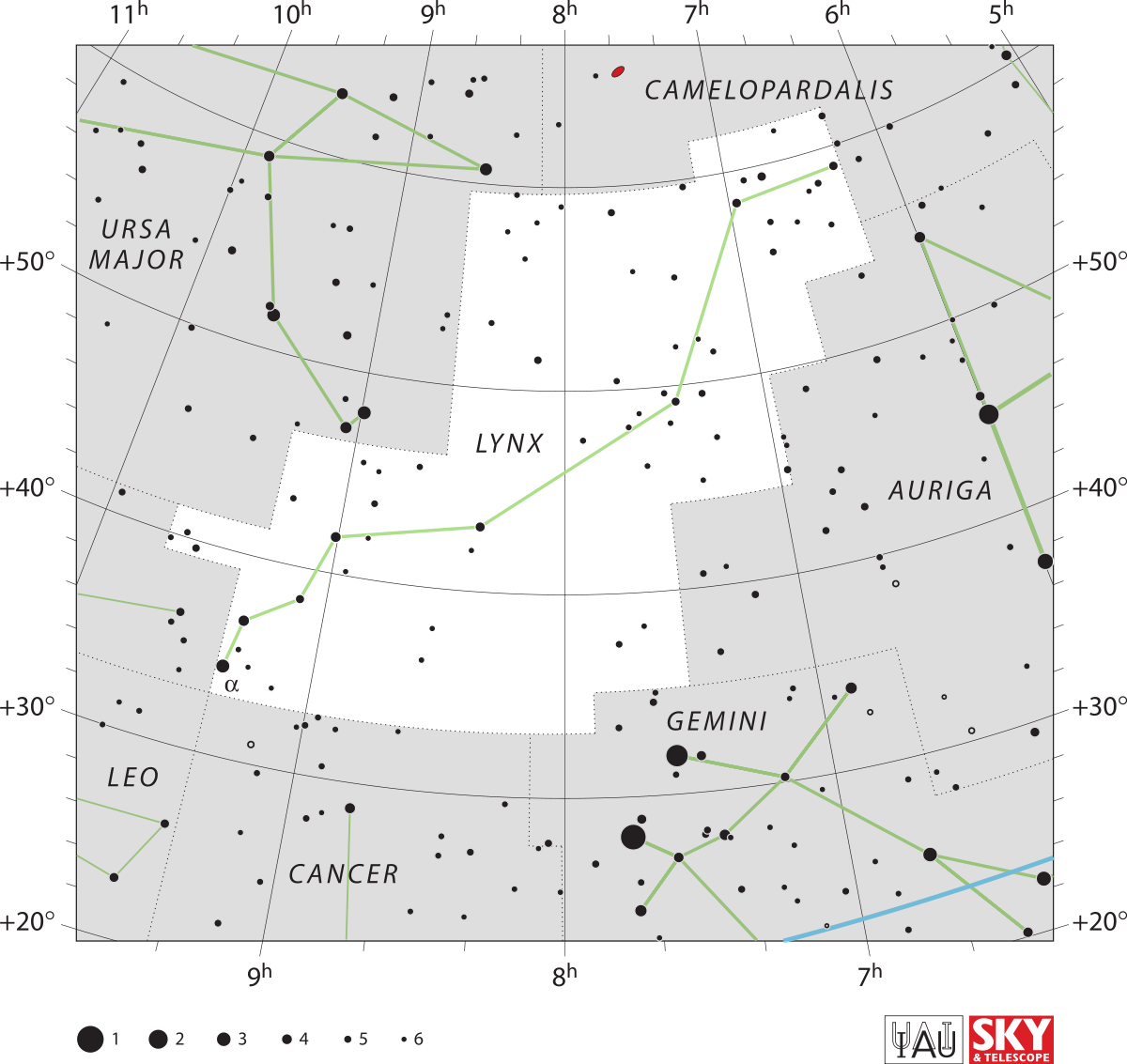 Constellations drawing telescopium. Lynx constellation wikipedia