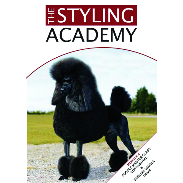 Continental clip poodle cut. Master class and english