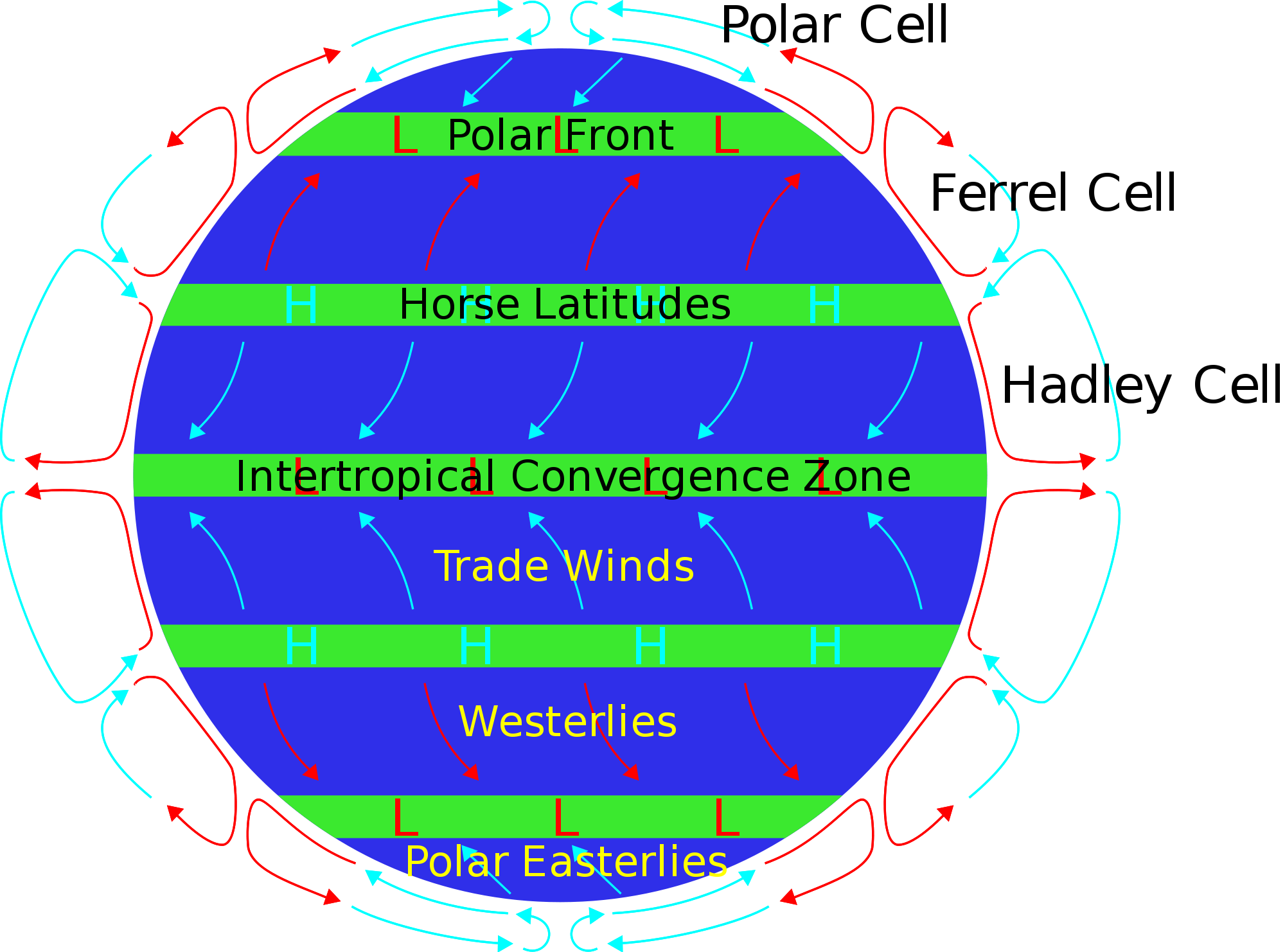 Convection drawing ocean current. Horse latitudes wikipedia a