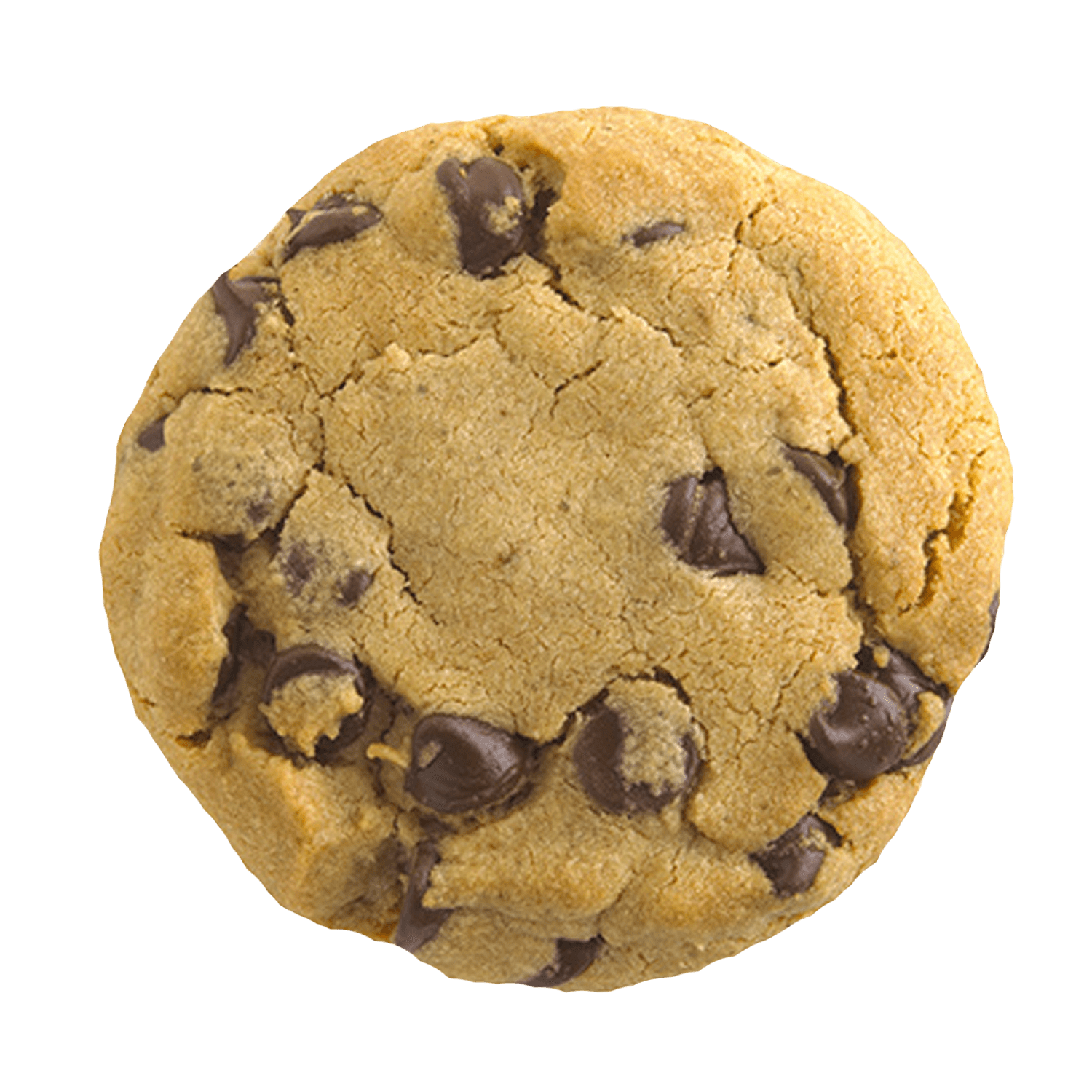 Chip drawing chocolate cookie. Transparent png stickpng
