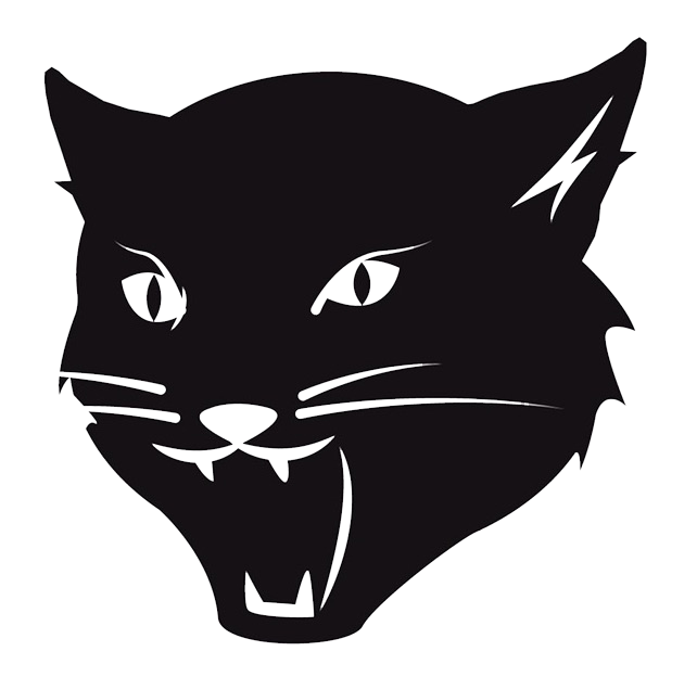 Cool cat png. Music company
