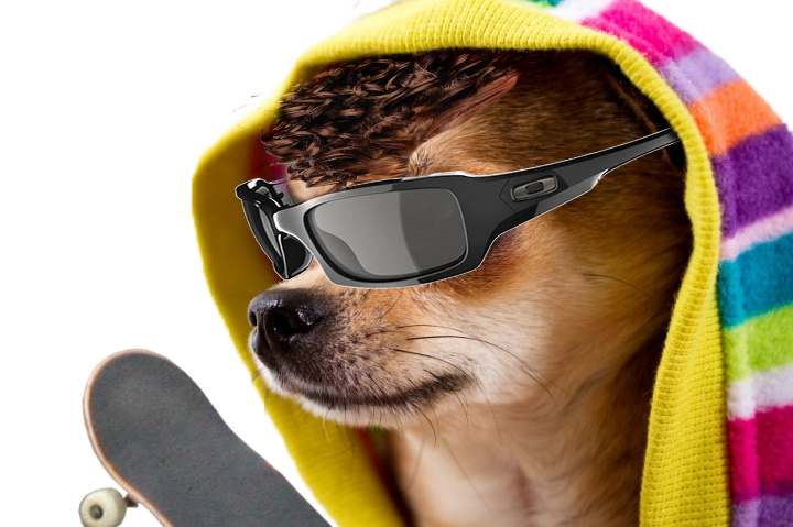cool dog png