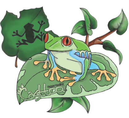Drawing frogs colour. Free frog tattoo pictures