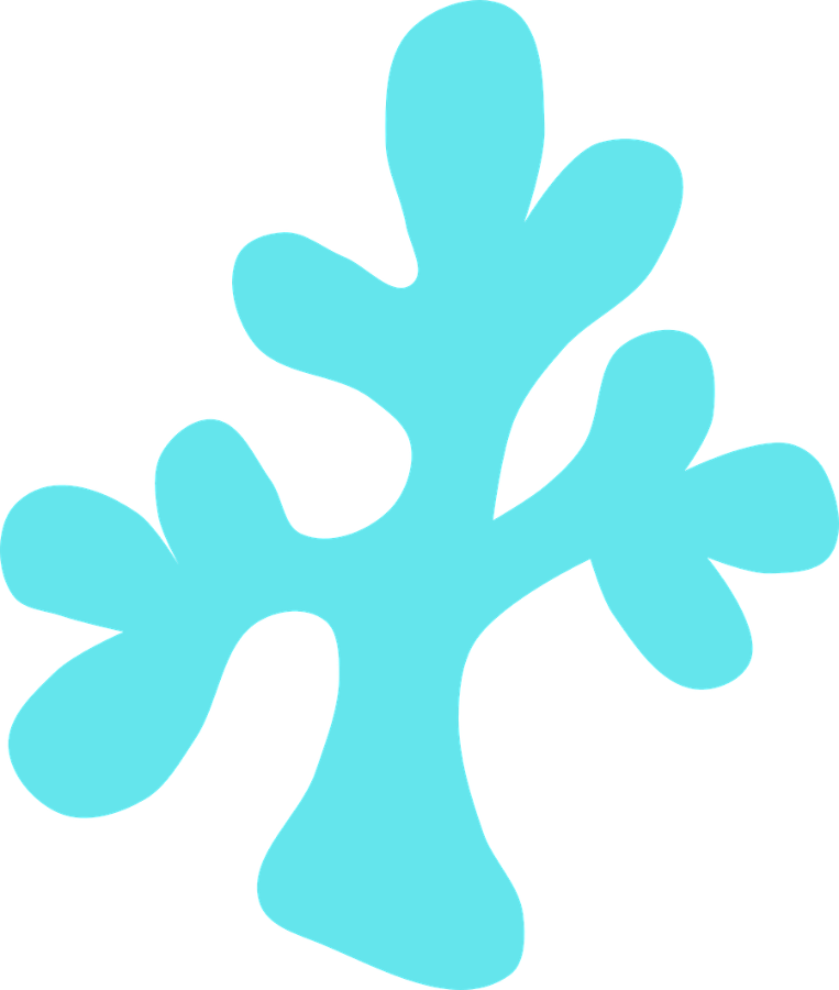 Coral clipart png. Pin by melody bray
