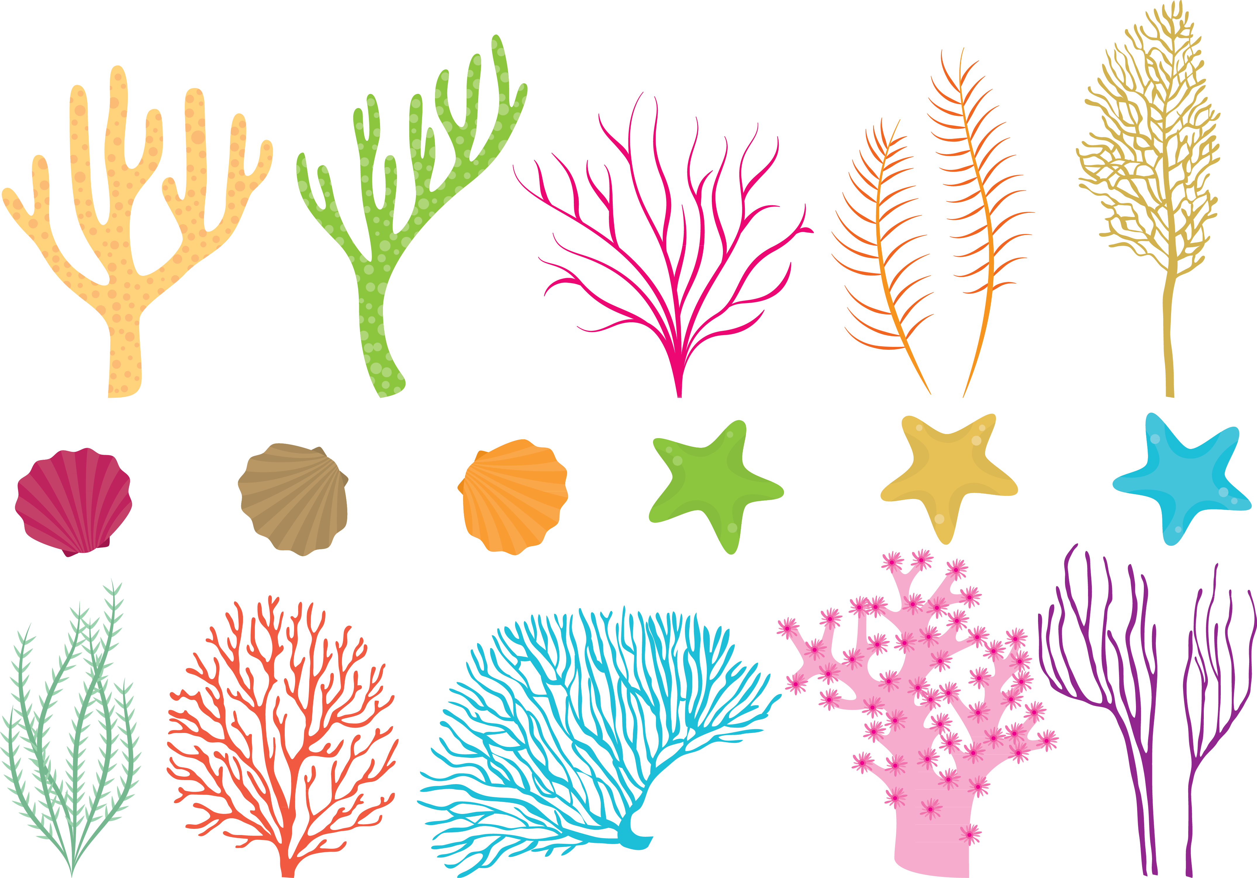 Coral reef png. Fish sea vector colored
