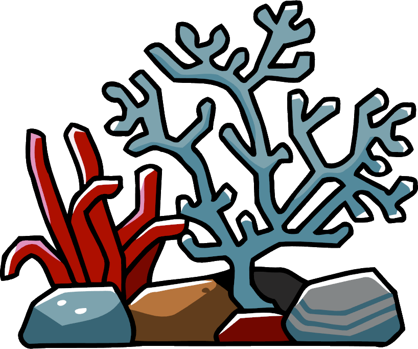 Coral reef clipart png. Collection of high