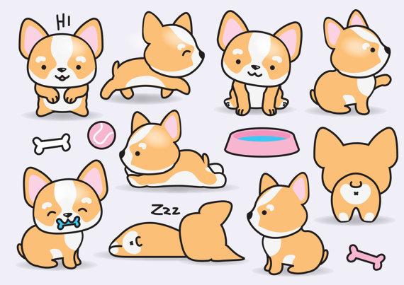 Premium vector kawaii corgis. Corgi clipart chibi png free download