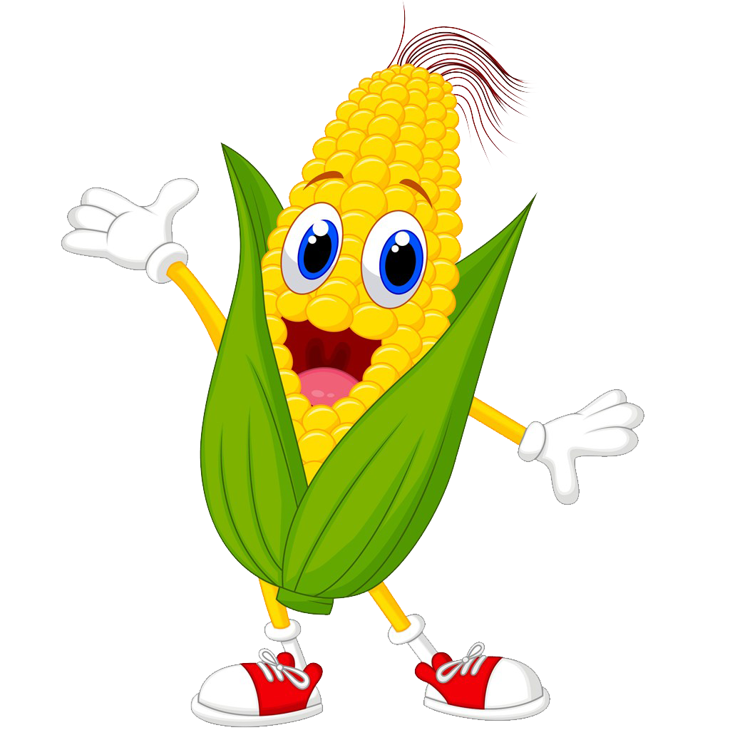 Corn cartoon png. Maize on the cob