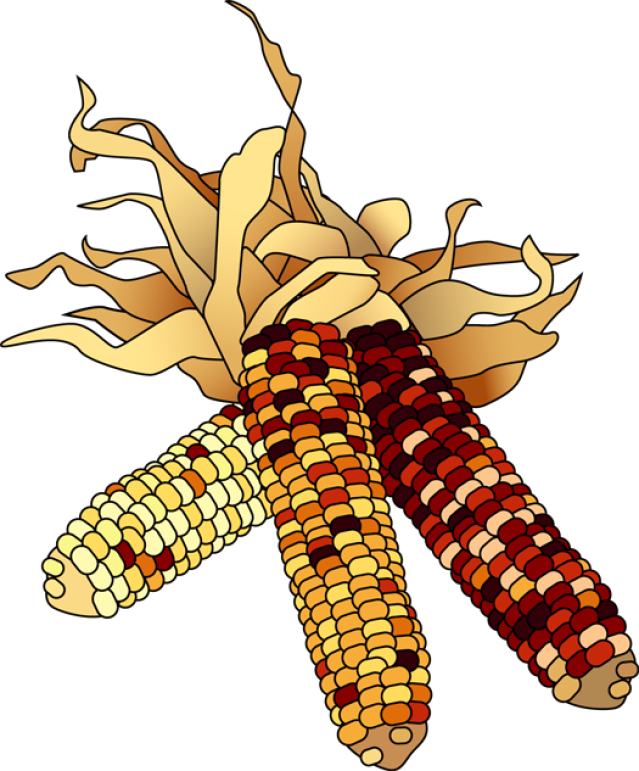 Corn clipart clip art. Indian colorful for the