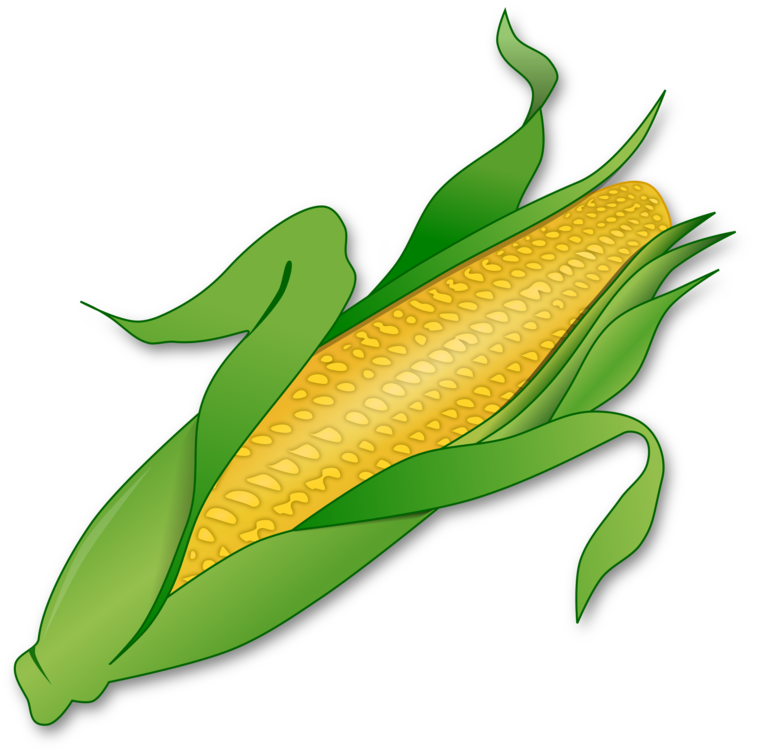 Corn clipart cob. Candy maize on the