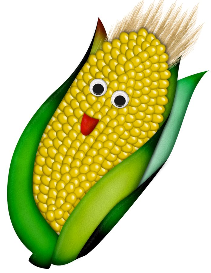 Corn clipart dried corn. Indian at getdrawings com