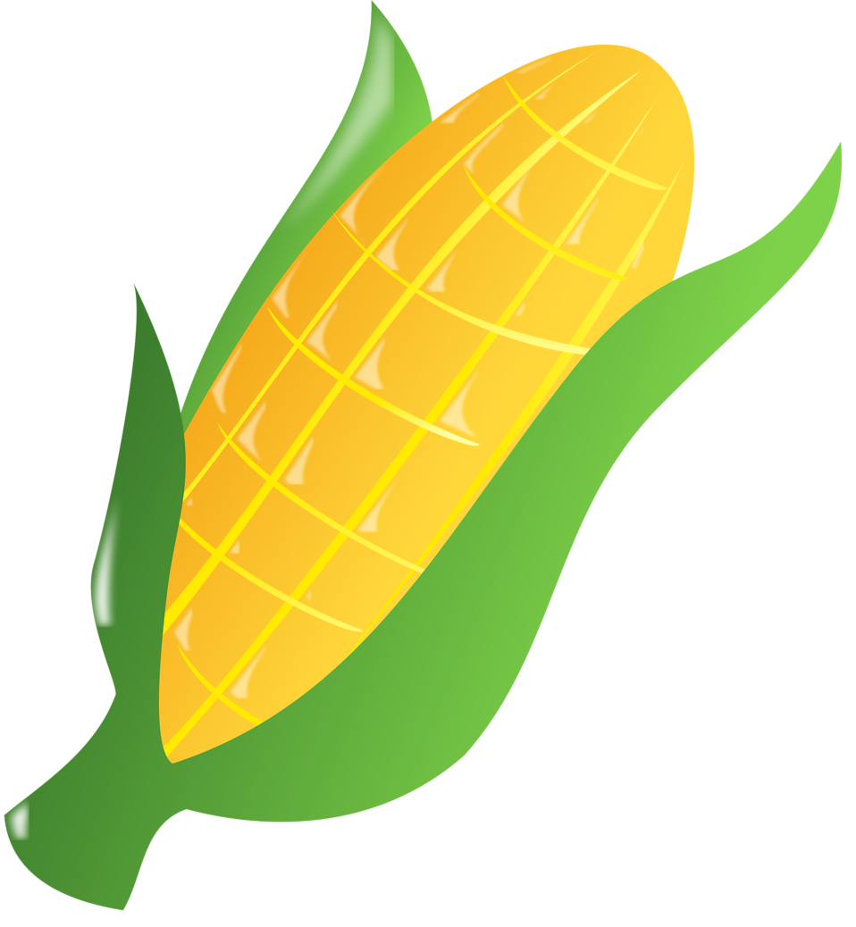 cornfield drawing clipart
