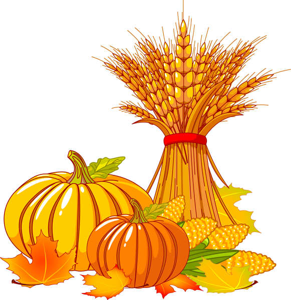 Corn clipart thanksgiving. Free fall cliparts download