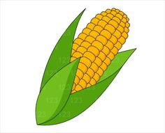 Corn clipart garden. Man food pinterest wood